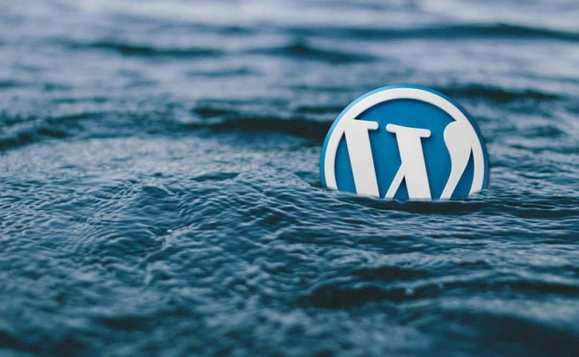 Utlisation du CMS WordPress pour la réalisation de nos sites internet