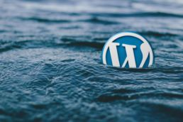 Site internet avec CMS Wordpress